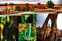 Algo de Teruel