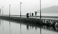 Amb pluja