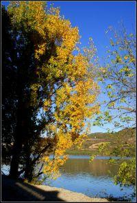 La tardor al llac (al tema II)