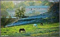 Osona rural