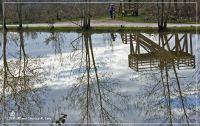 Reflexes a l'estany