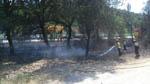 Incendi a La Ferreria - La Batllòria Foto: Pep Molleví