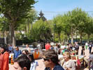 Sant Jordi 2017 al Baix Montseny Vallgorguina