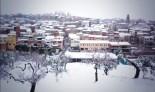 Temporal de neu als Ports i Terra Alta i llevantada al Delta La Fatarella, Joan Rius.