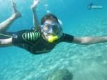 D'excursió subaquàtica per la mar de l'Ebre, amb Plàncton
