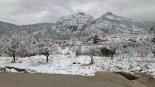 Més imatges de la nevada a les TE Bot. Josep Mulet