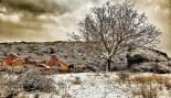 Més imatges de la nevada a les TE Mataredona. Rafa Baila