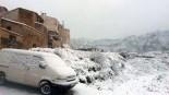 Més imatges de la nevada a les TE Prat de Comte. Joan Berbis