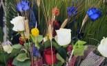 La diada ebrenca de Sant Jordi