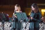 Terra d'Oliveres, la nova acció d'Ebre, Música i Patrimoni