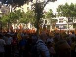 La manifestació del 10-J amb ulls ripollesos Bloc del PSC. Foto: Núria López