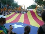 La manifestació del 10-J amb ulls ripollesos L'estelada d'ERC. Foto: Sergi Albrich