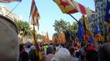 La manifestació del 10-J amb ulls ripollesos Marea humana al passeig de Gràcia amb Aragó. Foto: Anna Colomer