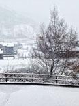 Paisatge i meteorologia de novembre al Ripollès Llanars, ben blanc (30 de novembre). Foto: Joan Vila