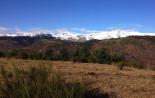 Paisatge i meteorologia de desembre al Ripollès El Costabona i el Canigó, des de Molló (4 de desembre). Foto: Pep Coma