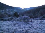 Paisatge i meteorologia de gener al Ripollès Glaçada a Sant Bernabé de les Tenes (21 de gener). Foto: Antonina Coromina