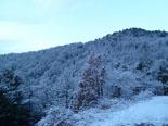 Paisatge i meteorologia de gener al Ripollès La serra Cavallera ben nevada (30 de gener). Foto: Antonina Coromina