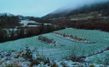 Paisatge i meteorologia de febrer al Ripollès Enfarinada a Sant Bernabé de les Tenes (10 de febrer). Antonina Coromina