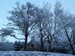 Nevada del 4 de març al Ripollès Neu a l'entorn de Ripoll. Foto: Antonina Coromina