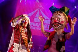Clownia 2017
