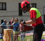 XIX Concurs de Tallar Troncs de Vallfogona