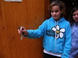 Dia Mundial dels Ocells al Molí Petit