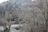 Glaçades i enfarinada del 23 de desembre La zona de Caganell (Ripoll) sota zero. Foto: Arnau Urgell