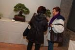 XVI Exposició de Bonsais de Sant Joan