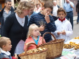 Festa del Bolet de Setcases