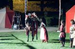 Mercadal del Comte Guifré de Ripoll