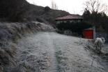 Paisatge i meteorologia desembre 2011 i gener 2012 Matí glaçat a Ripoll (12 de gener). Foto: Arnau Urgell