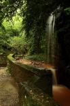 Ripollès: paisatge i meteorologia (juny-juliol 2011) La font grossa d'Ogassa. Foto: Josep Maria Soler