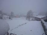 Nevada del 31 de gener al Ripollès Sant Pau de Segúries ben blanc. Foto: Montse Muntadas
