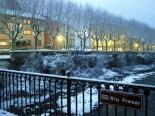Nevada del 7 de gener Neu al Freser. Foto: Laia Deler