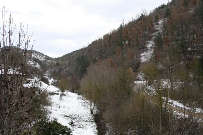L'endemà de la nevada La neu a la zona de Caganell (Ripoll). Foto: Arnau Urgell