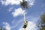 El 2009 al Ripollès, en 100 imatges Matamala recupera la Festa del Pi de Maig (Matamala, les Llosses, 10 de maig) Foto: Arnau Urgell