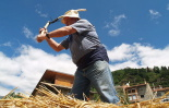 L'any 2010 en 100 imatges Batent a la Firallonga de Vilallonga de Ter. Foto: Xevi Mas