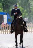 El 2012 al Ripollès, en 125 imatges Prova del Campionat de Doma Vaquera a Ripoll. Foto: Arnau Urgell