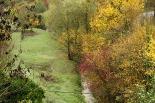 Crescuda rius pluges 3-4 novembre La riera de Caganell plena amb un esclat de colors de tardor (3 de novembre). Foto: Arnau Urgell