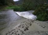 Crescuda rius pluges 3-4 novembre El Segadell abans d'arribar a Ribes (4 de novembre). Foto: Foto: Josep Manuel Mercader/Meteoribes