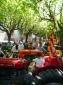 Fira de Sant Isidre de Sant joan de les Abadesses (II) Tractors antics