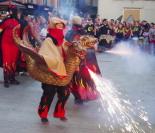 Mostra Representativa de Bestiari Festiu a Ripoll (tarda)