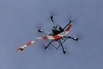 Endesa reposa amb drons les línies d'alta tensió del Parc Natural