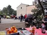 Aplec de Joncadella a Manresa