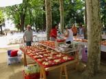 Festa Major de Moià 2012