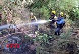 Vistes aèries i al lloc de l'incendi de Sant Feliu Sasserra