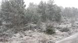 Nevada al Bages 4 de febrer de 2015 Castellgalí. Anaïs Pérez