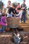 Festa de la Verema a la Finca Urpina