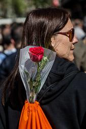 Sant Jordi 2015 a Barcelona