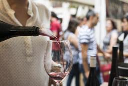 Les millors fotos de la setmana de Nació Digital Fira del Vi de Tarragona. </br> Foto: Laura Rodríguez